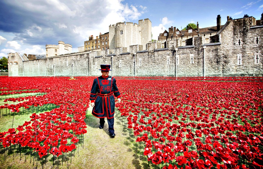 Blood Swept Lands and Seas of Red at The Tower of London. An ins
