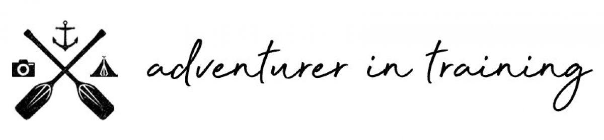 adventurerintrainingblog